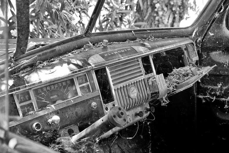 Plymouth Dashboard