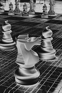 Giant Chess bw