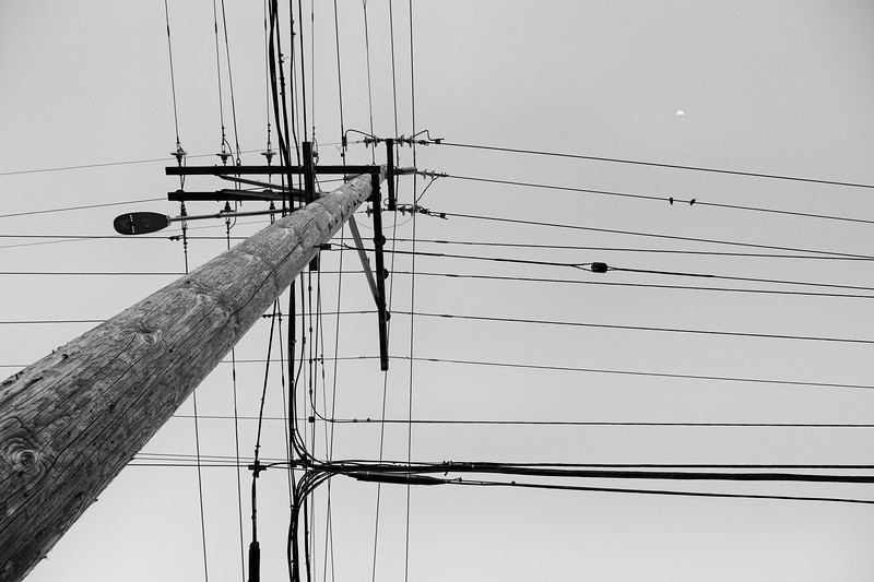 Wires 4473