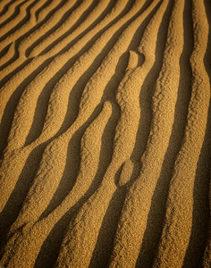 Ripples in Coarse Sand