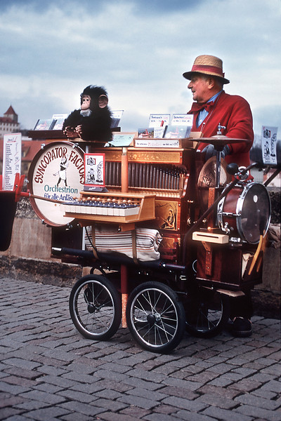 - Шарманщик на Карловом мосту<br /> - Organ-grinder in Charles Bridge