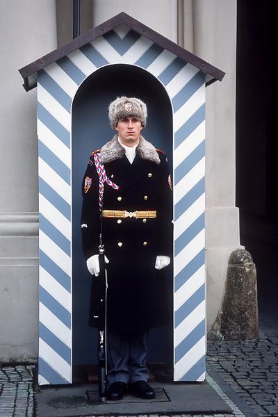 Стража / Guard