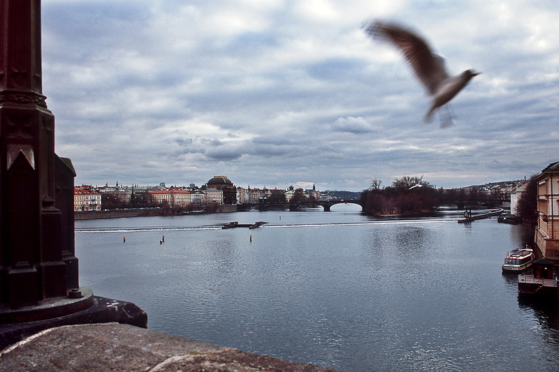 - Вид на реку Влтава с Карлового моста, Прага<br /> - Vltava river view from Charles Bridge, Prague