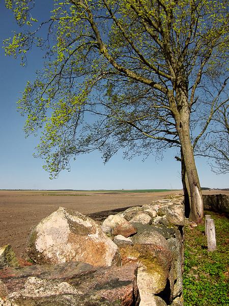 Деревня Сынковичи