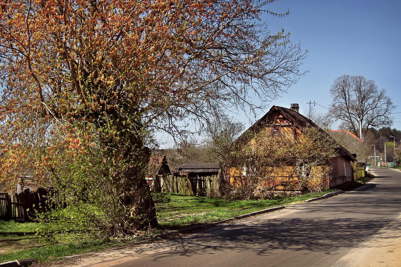 Деревня Жировичи Слонимского района