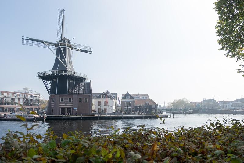 Windmill / The Netherlands<br /> Мельница / Нидерладны