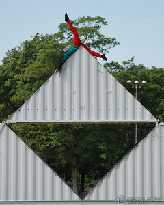 Origami - Cie Furinkaï - Festival de la Cité - Parc de Milan - Lausanne - 11 juillet 2014