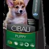 Cibau7