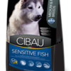 Cibau8