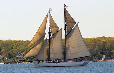 11x17 boat5287