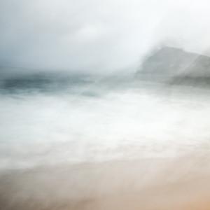 Whale Beach #1