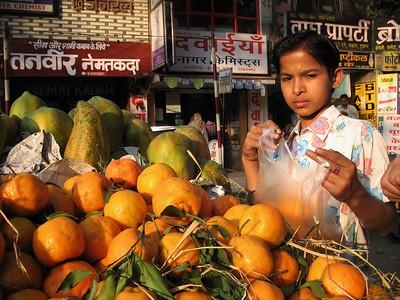 Fruit Wala (seller), Indore, MP, India