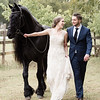 Friesian Shoot-591-2