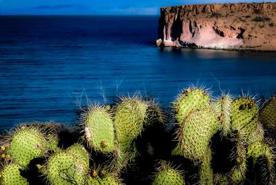Baja California Sur, Isla Espiritu Santo, Mexico