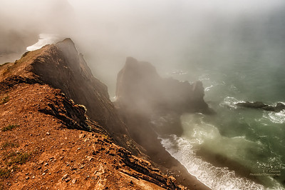 Foggy Marin Coast Beach