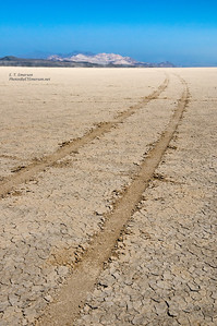 Black Rock Desert Tracks