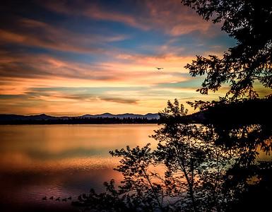 Canadian Geese Sunset, Dreamwood Bay, Liberty Lake, Washington