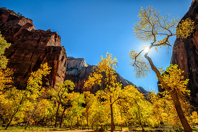 Temple of Sinawava in Zion Canyon