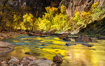 Virgin River Reflections