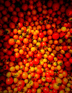 Cherry Tomatoes- Food Photography