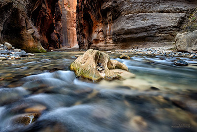 Zion's Narrows