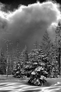 Approaching Storm Clouds at Yosemite