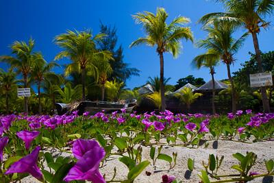 Roatan, Honduras beach