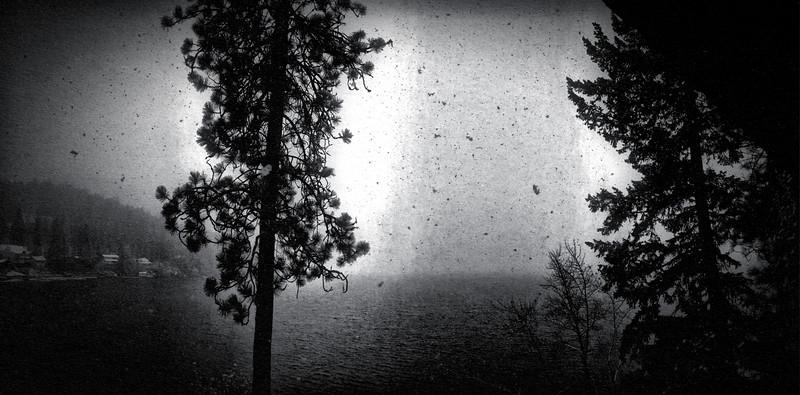 Dreamwood Bay Snow Storm, Liberty Lake, Washington