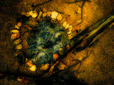 campfire-ring-5961