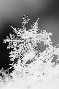 Macro-Snowflake-Crystals