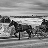 Amish-Horse and Buggy-Millersburg OH