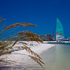 Marco Island-Sailboat-Gulf of Mexico