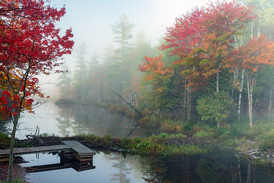 Adirondacks Pond Dock