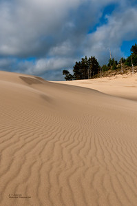 Oregon Dunes National Recreation Area