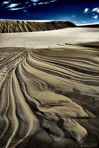 Oregon Dunes National Recreation Area (Solarized v1)