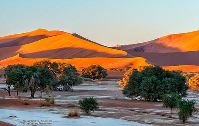 Sossusvlei Dune Field