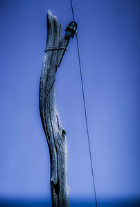 telephone-pole-0002
