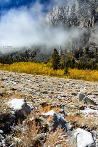 Rock Creek Snow and Aspen