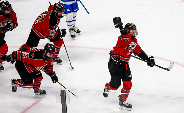 Alexandria's Ella Westlund (19) celebrated scoring a goal with 13.3 seconds left in the 3rd period. Westlund's goal would tie the game and send Alexandria into double  overtime. Alexandria lost to Minnetonka in the Class A State Quarterfinal