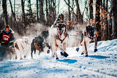 Musher Martha Schouweiler and her sled dog team led by Flossy embark on the 120 mile race which started in Duluth, Minnesota.