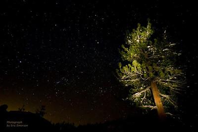 Donner Pass Night Skies