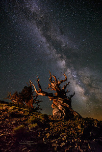 Milky Way Above the Ancients