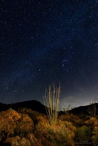 Anza-Borrego DSP Night Sky