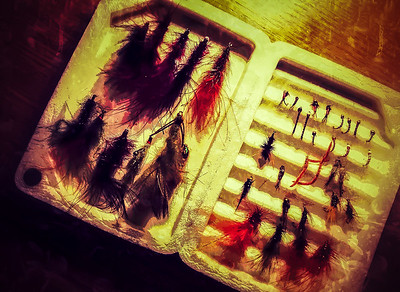 Checking the Fly Box