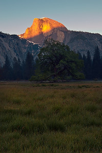 Half Dome in Sunset Light