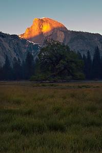 Half Dome in Sunset Light