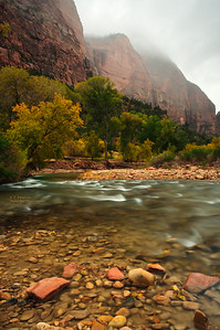 Rainy Day in Zion NP