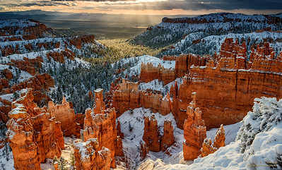 Early Morning Rays Painting Bryce Canyon at Sunset Point