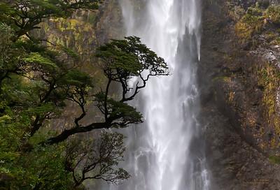 Punchbowl Falls, NZ