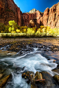 Virgin River Rapids